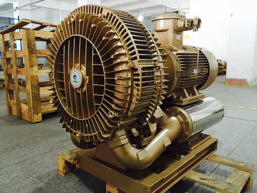 30kw Explosion Proof Vacuum Pump Blower With Nanyang Frequency Changed Atex Motor