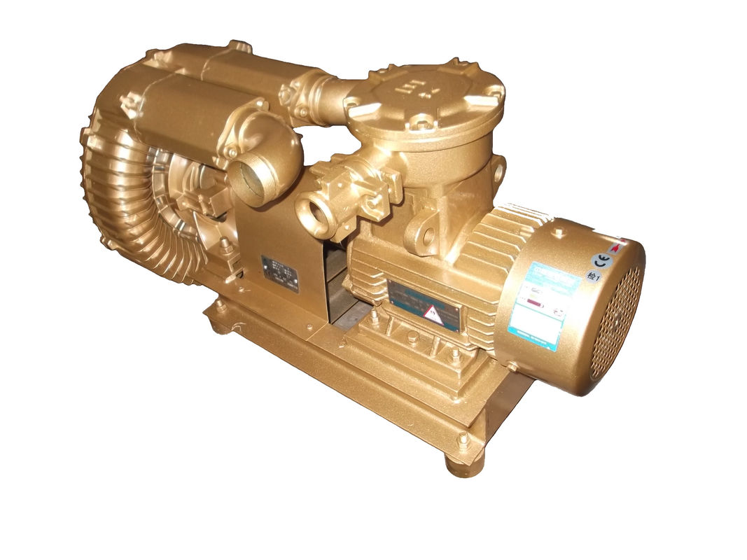 Electric Goorui Side Channel Blower Pump Anti Explosion And Anti Corrosinon